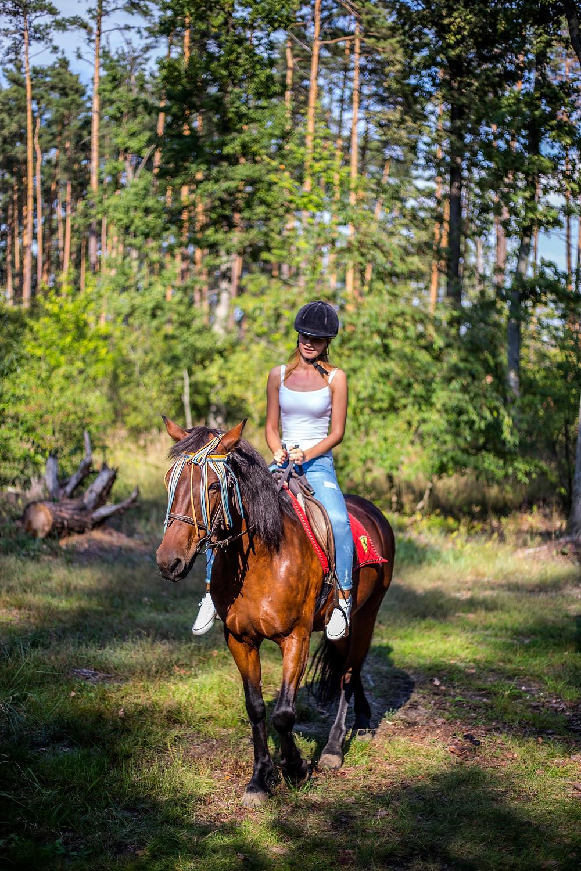 Романтическая прогулка на лошадях,  сервис романтики Альтечо, Киев