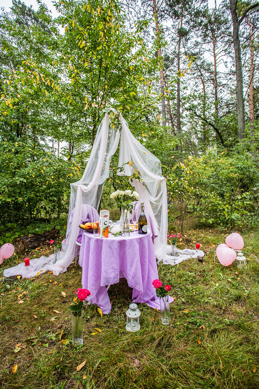 Романтический ужин в лесу