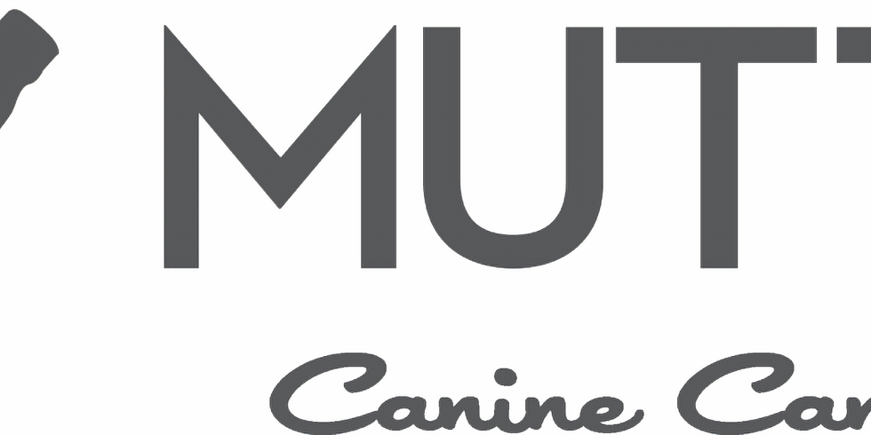 MUTTS Canine Cantina - Dallas