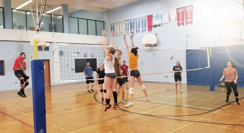 Volleyball%2520-%2520Reverse_edited_edited.jpg