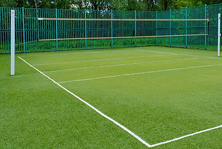 Turf%20Court_edited.jpg
