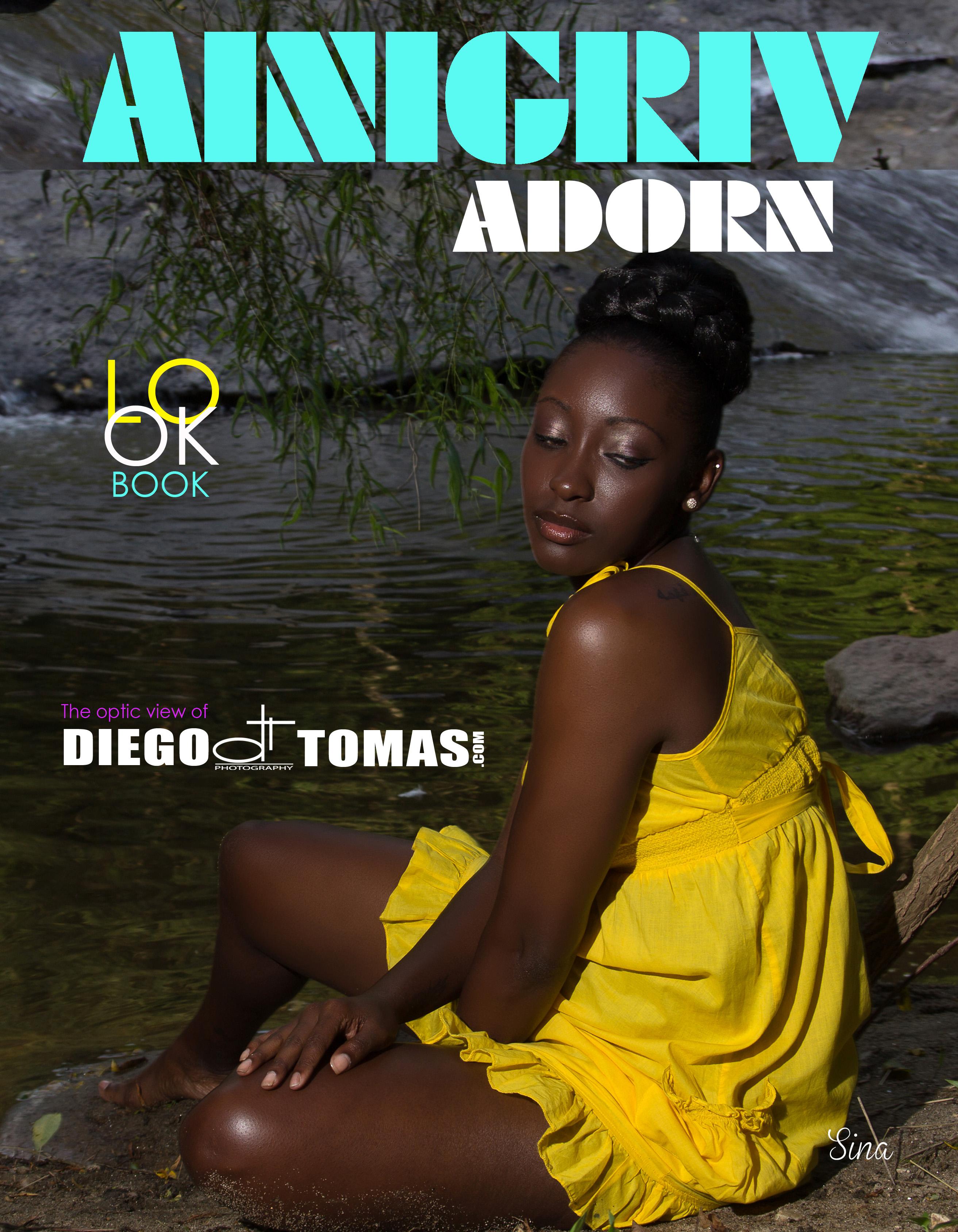 Ainigriv Adorn Look Book 10