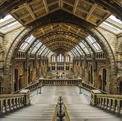 Architecture (28 of 50).jpg