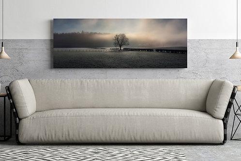 Misty Tree Canvas
