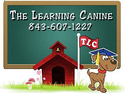 the learning canine.jpg