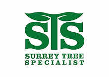Surrey Tree Specialist HD.webp
