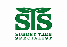 Surrey Tree Specialist HD.webp