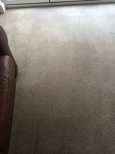 After 1 All Clean Carpet.jpg