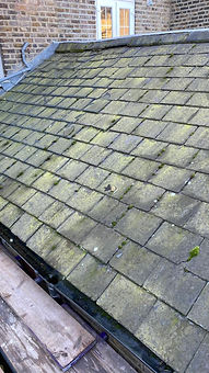 Roof Moss, Lichen and Pollen Removal.jpg