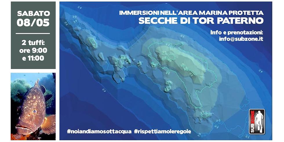 Immersioni nell'AMP di Tor Paterno