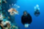 dive_master.png