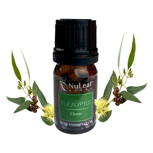 EEUC001 Eucalyptus Essential Oil