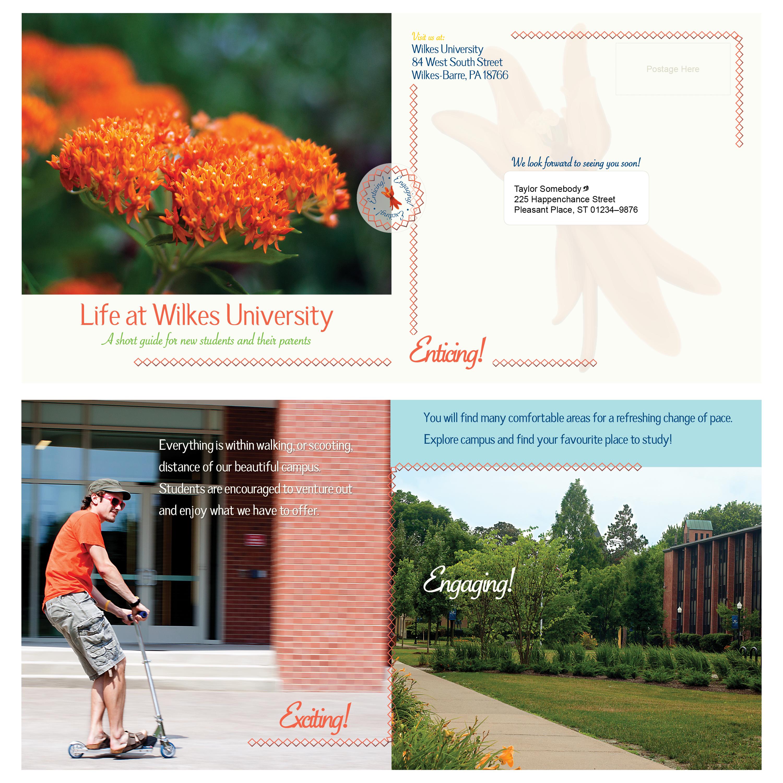 Wilkes Tri-fold Brochure