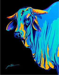 Brahman Bull Power 30x24