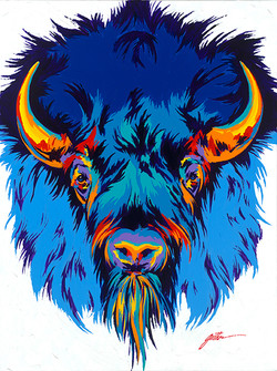Bull Bison 40x30