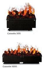 Cass500.jpg