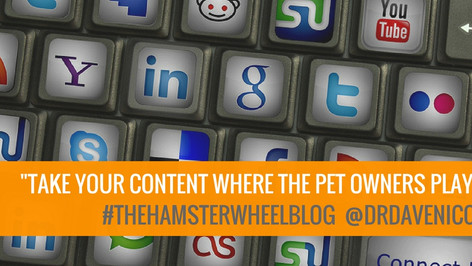Digital Marketing Part 3: Connecting With Pet Owners