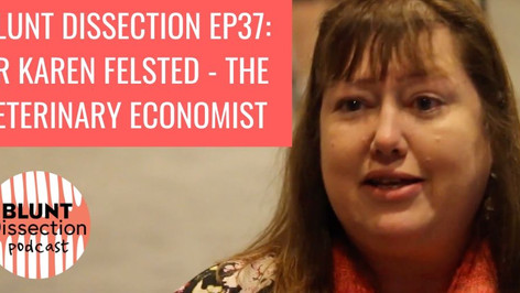 Blunt Dissection Ep 37: Dr Karen Felsted - The Veterinary Economist