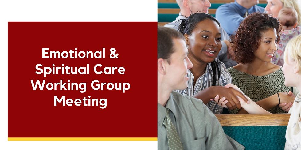 Emotional & Spiritual Care Working Group Meeting