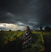 Rainshowers and Sunflowers
