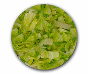 Iceberg Lettuce Web.jpg