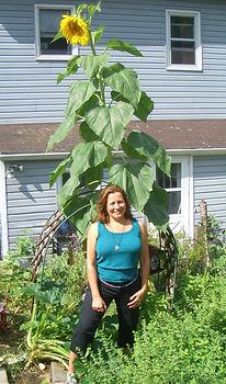 Rosemary Sunflower.jpg