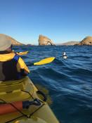 10. Catlins Kayak & Adventure, Kaka Point