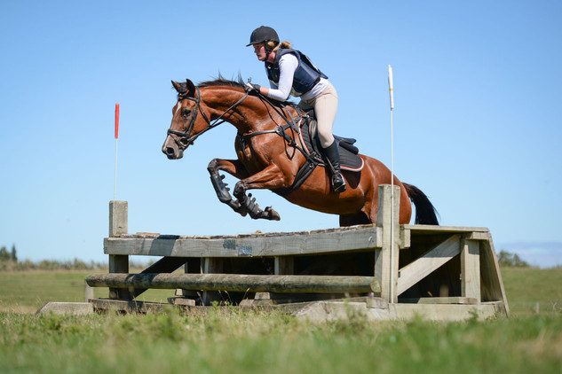 Horse Riding - Natwick Sports Photograph