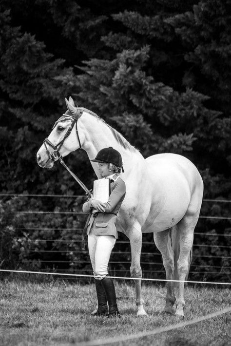 Equine Photography by Natwick (16).jpg