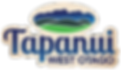 tapanui-township-logo-website.png