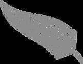 Copy of Silver fern right_fade_edited_ed