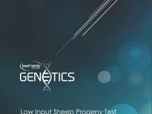 Low Input Sheep Progeny Test - Cohort 2019 Report, June 2020