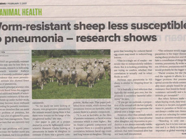 Worm-resistant sheep less susceptible to pneumonia