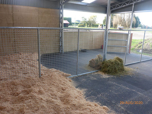Horse Stables with rubber matting (5).jp