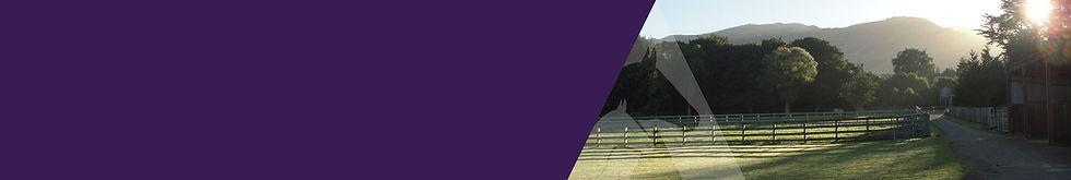 Arden-Lodge_website-banner_V3.jpg