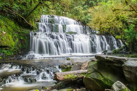 Catlins Scenic & Wildlife Tours