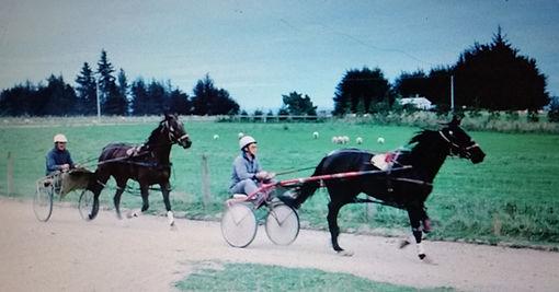 Doug and John working horses.jpg