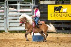 Natwick rodeo photography