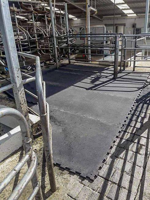 Comfy cow rubber matting (4).jpg