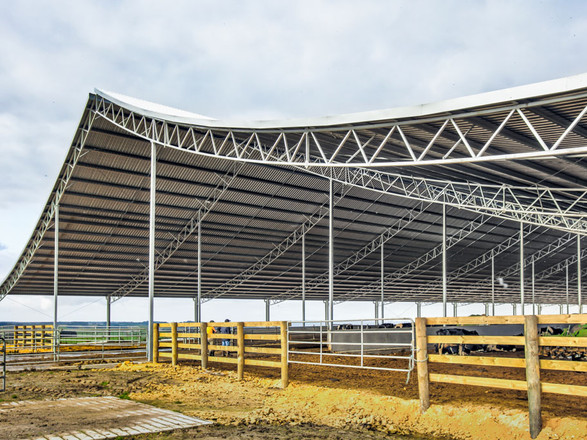Cow Shed - Prospec Structures NZ