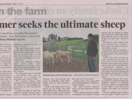 Farmer seeks the ultimate sheep