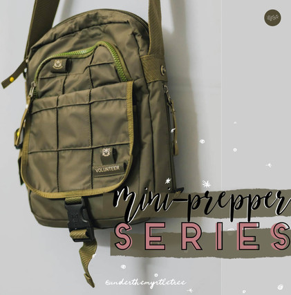 Mini Prepper Series!