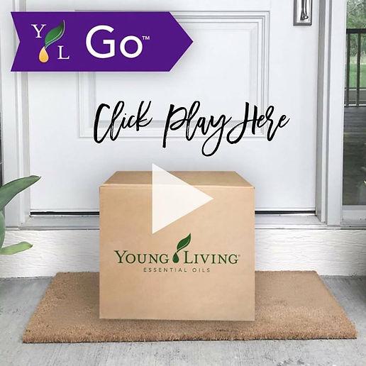 YL GO VIDEO.jpg