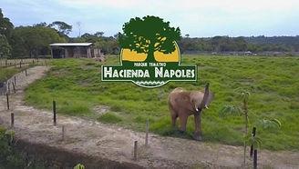 Hacienda_Napoles con Fly_Colombia