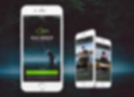 UI / UX Design - Fran Caye