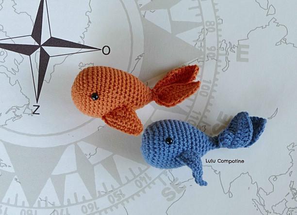 Des poissons rouge et bleu