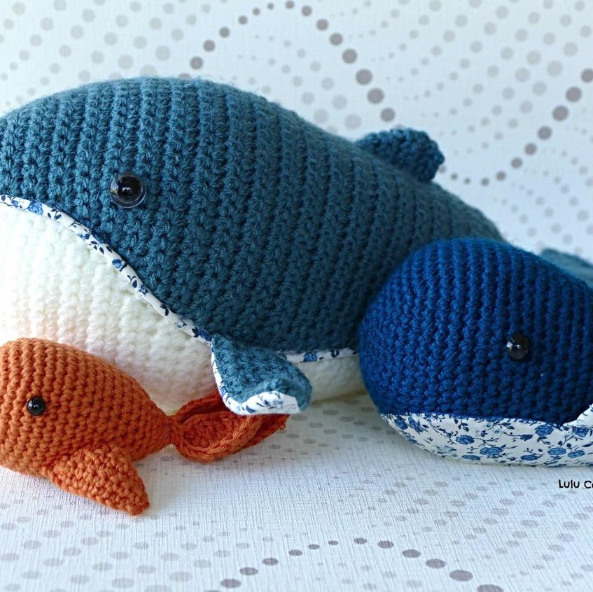 baleines et poisson