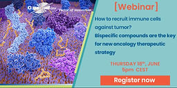 How to recruit immune cells against tumor? Bispecific compounds are the key for new oncology therapeutic strategy