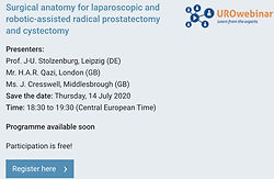 Surgical anatomy for laparoscopic and robotic-assisted radical prostatectomy and cystectomy