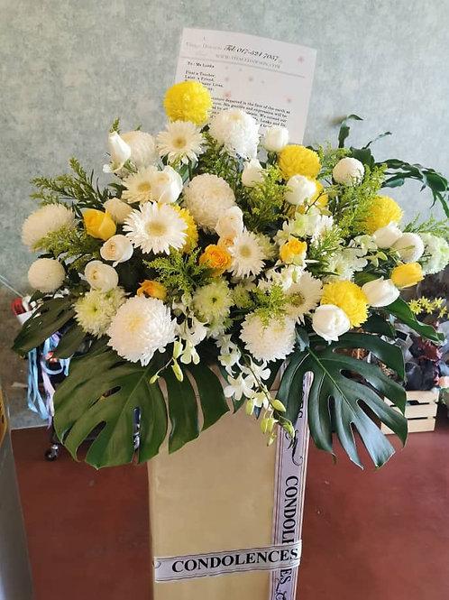 Condolence box stand 800